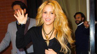 Shakira vende su espectacular casa de Miami/ Gtres