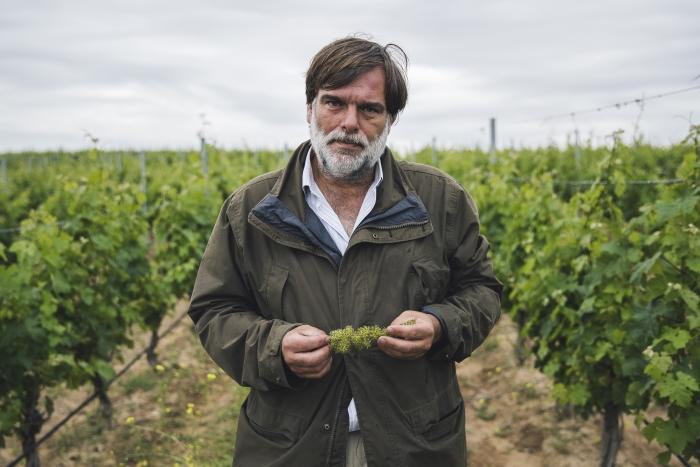 Bodega El Regajal Vinos de Madrid