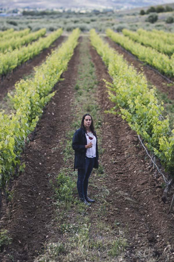 Bodega Señorío de Val Azul Vinos de Madrid