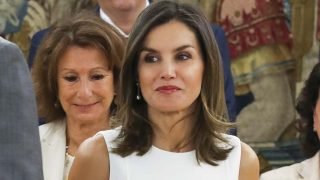 Doña Letizia luciendo bronceado en su última audiencia / Gtres