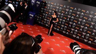 GALERÍA: Mira el 'top ten' de los looks más divinos de los Premios Goya/ Gtres