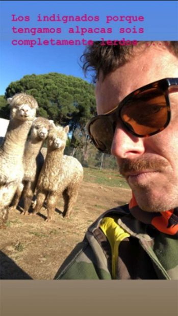 La dura respuesta de Aldo Comas, marido de Macarena Gómez, a las críticas por sus alpacas