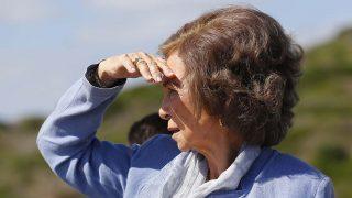 La reina Sofía, en pleno proyecto de 'Basuraleza' / Gtres.