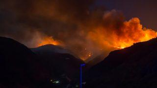 El incendio de Gran Canaria ha despertado la solidaridad de la gente / Gtres