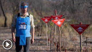 El príncipe Harry camina en un campo de minas en Dirico, Angola / Gtres
