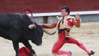 Gonzalo Caballero sufre una grave cornada en Las Ventas / Gtres