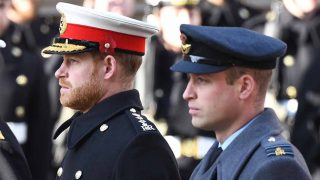 Los príncipes Guillermo y Harry en una imagen de archivo / GTRES