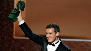 Antonio Banderas recibe el goya como Mejor Actor por 'Dolor y Gloria' / Gtres