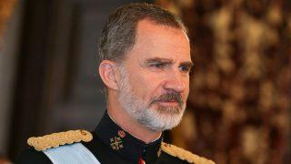 El rey Felipe en el Palacio Real / Gtres