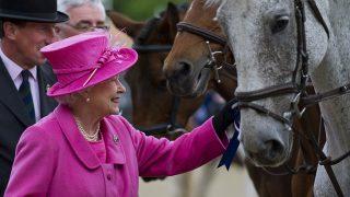La reina Isabel con uno de sus caballos en una imagen de archivo / Gtres