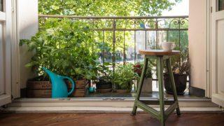 Cómo crear el huerto urbano con más estilo del barrio