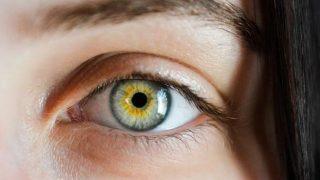 Ensalza la mirada a través de tus cejas