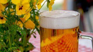 Día Internacional de la Cerveza 2021: ¿cómo celebrar este día?