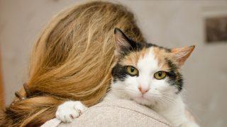 Por qué las mujeres solteras prefieren la compañía de los gatos