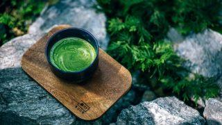El té verde es delicioso y muy beneficioso