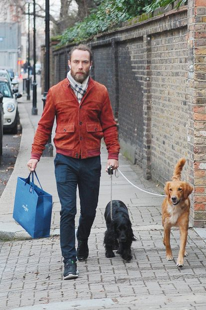 James Middleton superó su depresión gracias a los perros y por eso han sido protagonistas en su boda / Gtres