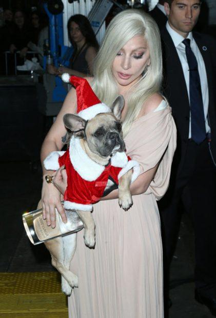 Lady Gaga junto a una de sus mascotas en una imagen de archivo./Gtres