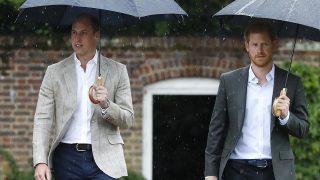 El Príncipe Harry con su hermano, el príncipe Guillermo en una imagen de archivo / Gtres