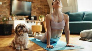 Pierde peso y disfruta de tu mascota, estos son los mejores deportes para practicar con perros