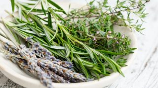 Mascarilla casera de aceite de oliva y romero para hidratar el pelo seco en verano