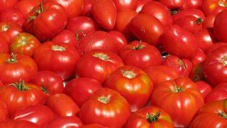 Los diferentes usos en la cosmética que nos da el tomate
