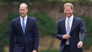 Los príncipes Harry y Guillermo durante el acto / Gtres