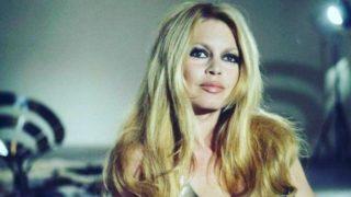 Brigitte Bardot, Marilyn Monroe y Audrey Hepburn llevarían estos pantalones de Zara