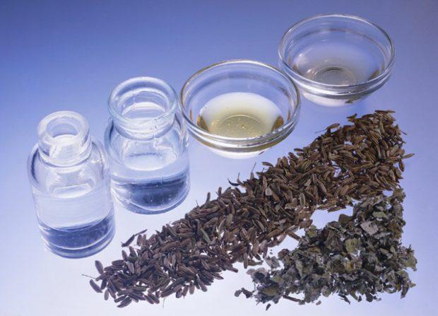 El aceite de coco ayuda a dar vitalidad a nuestra piel./Gtres
