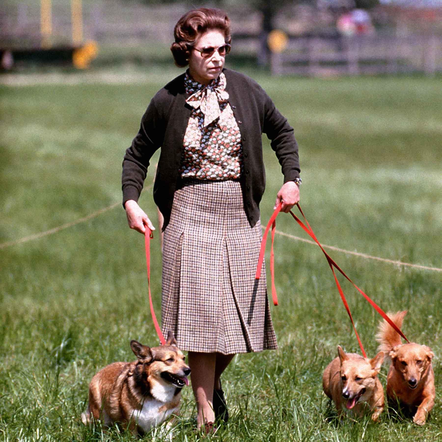 Isabel II en una imagen de archivo con algunos de sus perros / GTRES